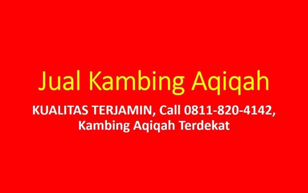KUALITAS TERJAMIN, Call 0811-820-4142, Kambing Aqiqah Terdekat